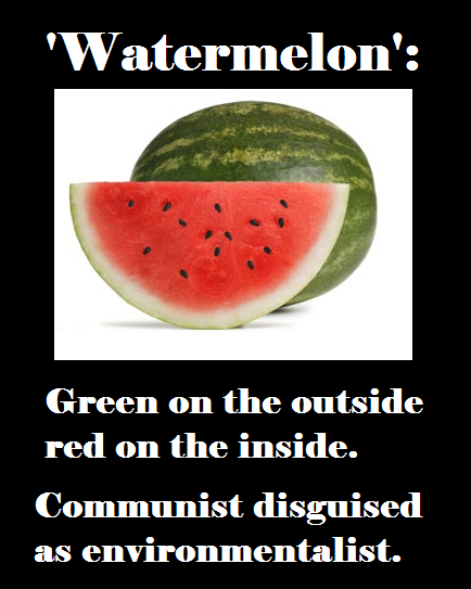 Water melon a political term to describe a communist or other form of socialist posing as an environmentalist, they may not even realize their stated goals serve socialism more than the environment.