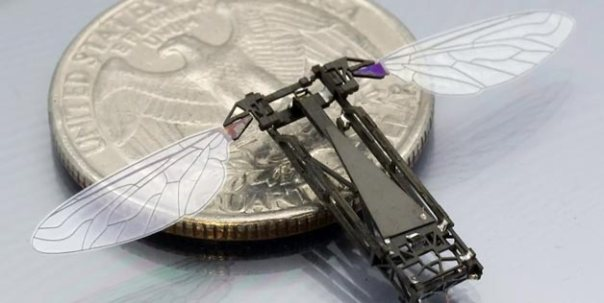 Robotic bee developed for mass production