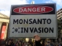 Monsanto stock price down 10% since protest action