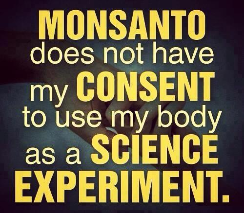 Share if you agree. Maybe I'm wrong. I thought consent was needed for this kind of stuff. Considering there are no long term tests done on GMO and GE food... That would make it an experiment. www.naturalcuresnotmedicine.com