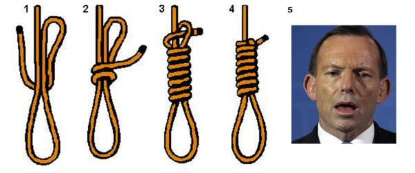 abbott noose