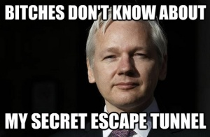 assange-escape1