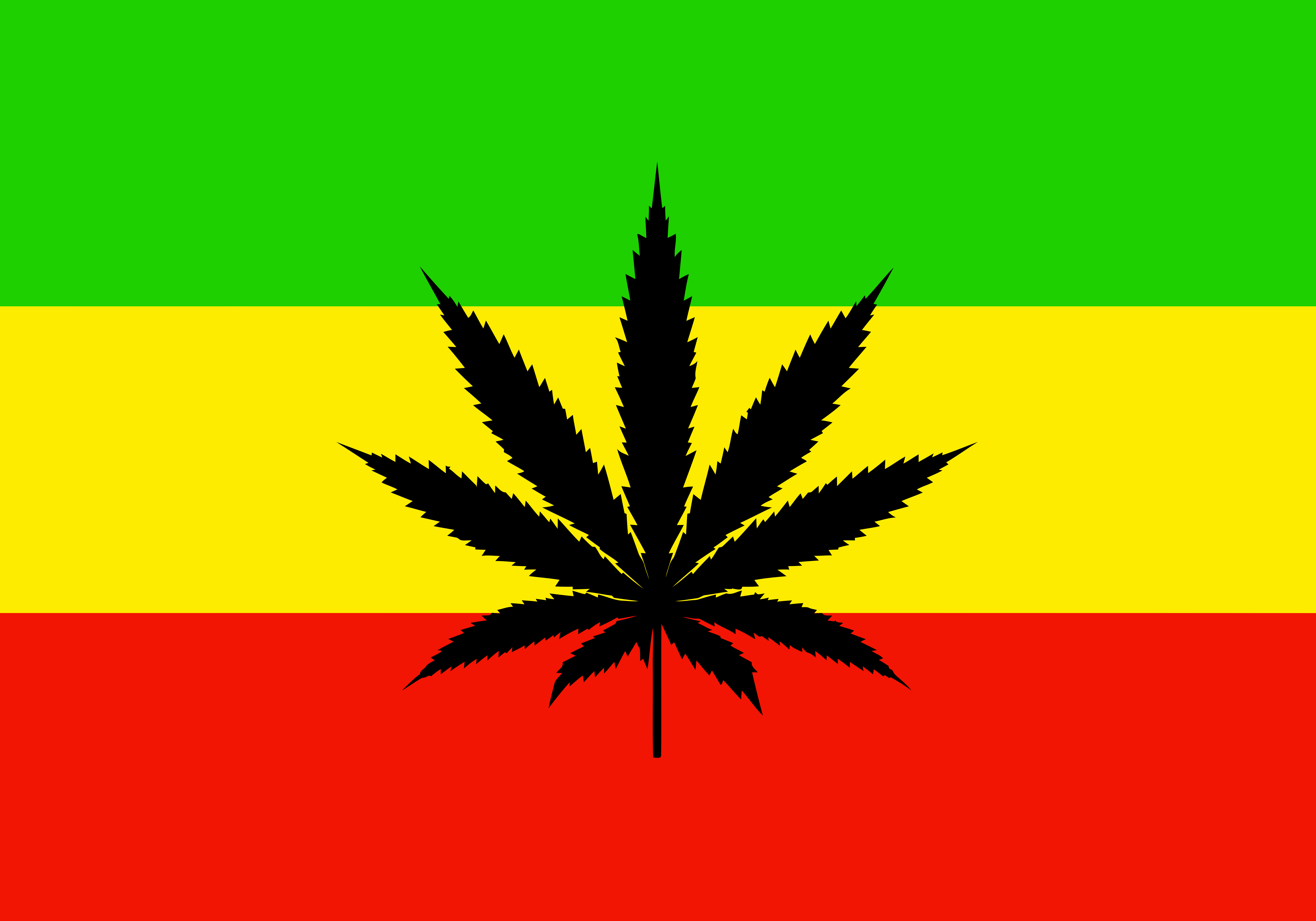 Image Gallery reggae flag